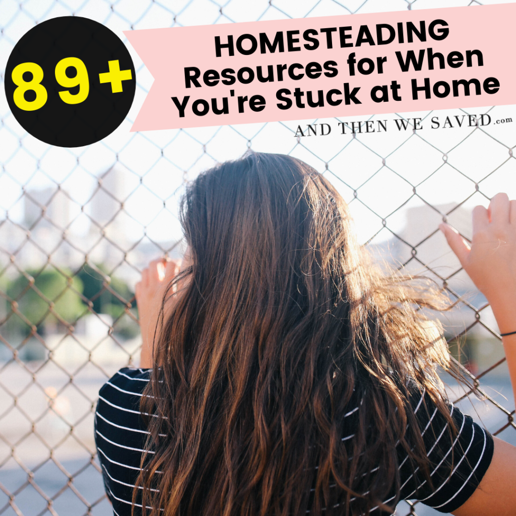 89 homesteading resources for when you're stuck at home